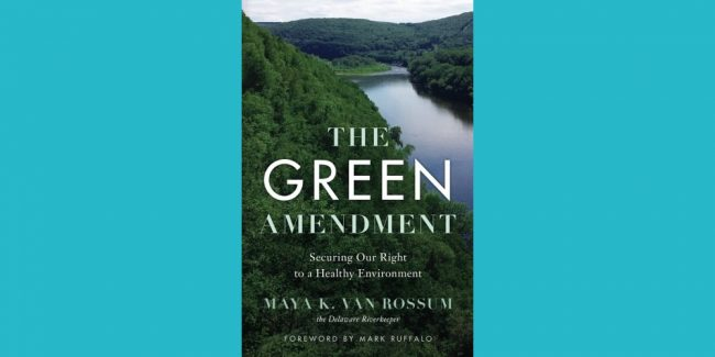 The Green Amendment Book