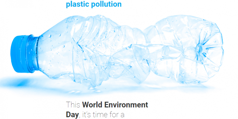 world environment day graphic