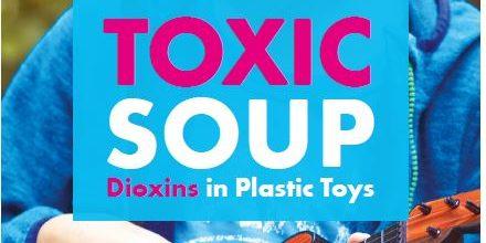 toxics in plastics - Toxic Soup Cover