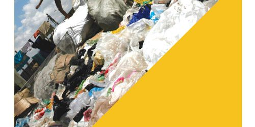 The State of Plastics Report Cover