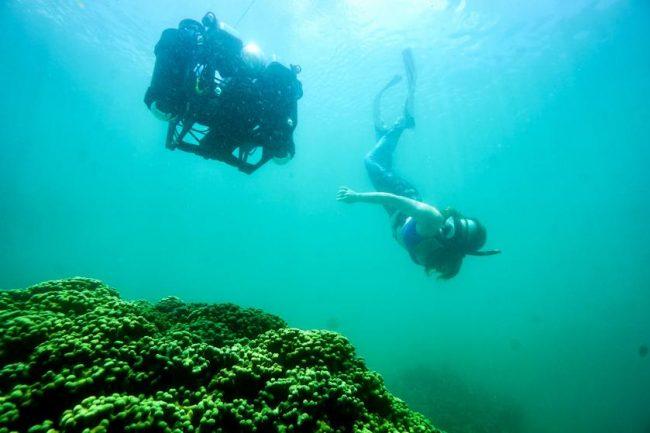 Earth Champions - Scuba Diving