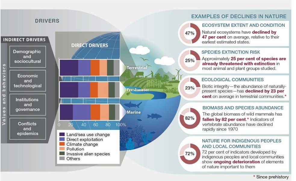 IPBES Global Assessment