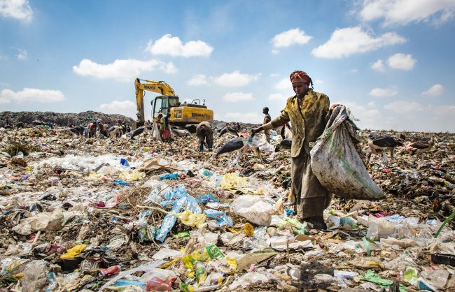landfill scavenging