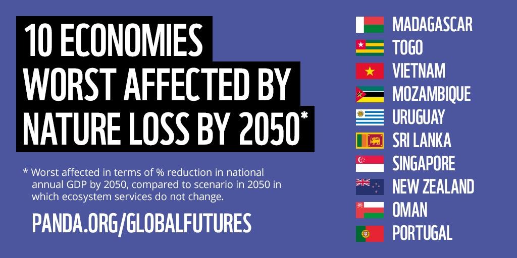 WWF Global Futures report